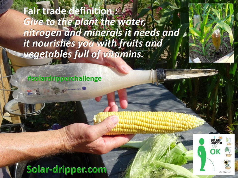 solardripperchallenge-fair-trade.jpg