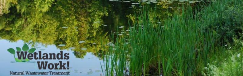 wetlandswork.png