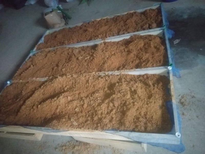 productdevelopment-biomass.jpg