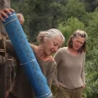 WendyHoward's Avatar