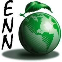 ENN's Avatar